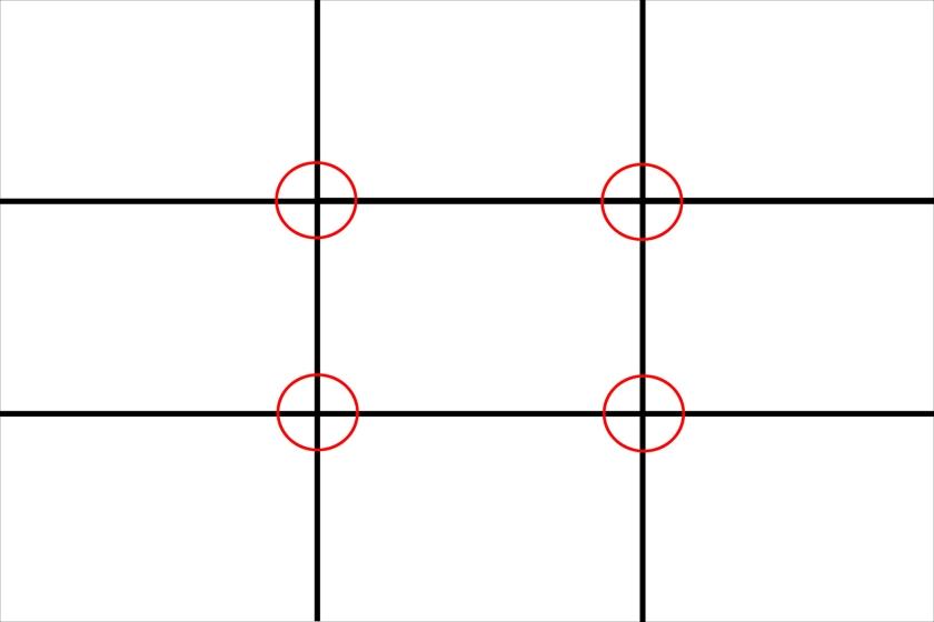 MOC Zuckerman on Composition Rule of Thirds 1-1.jpg